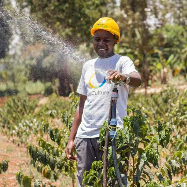 Expanding solar irrigation in Africa