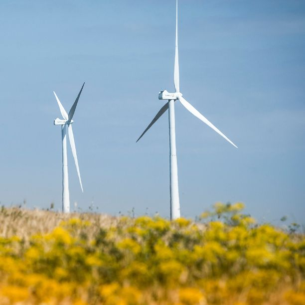 Triodos Renewables Europe Fund adds German wind project to the portfolio